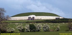 newgrange-safaris