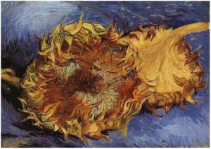 Two-Cut-Sunflowers