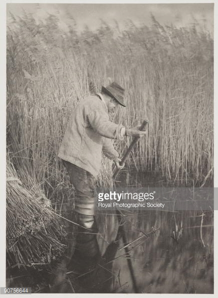 Man of the Marshes