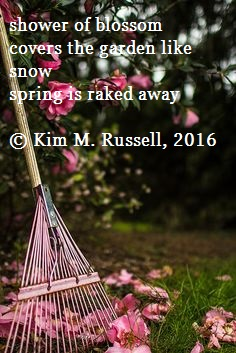 Raking Spring Away Haiga