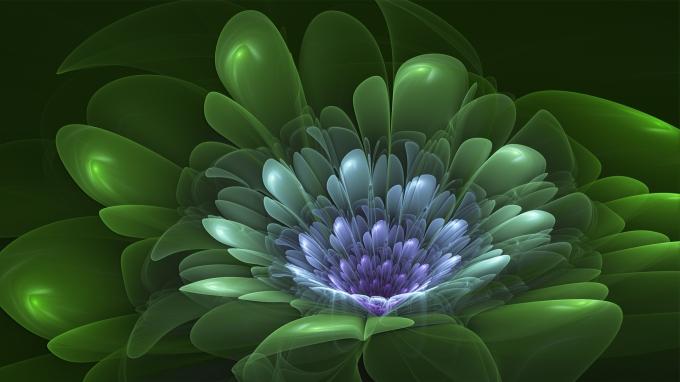 lotus_flower_by_frankief-d4dd91g
