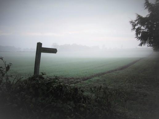Norfolk Mist (2)
