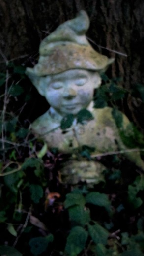 the-gnome-in-my-garden