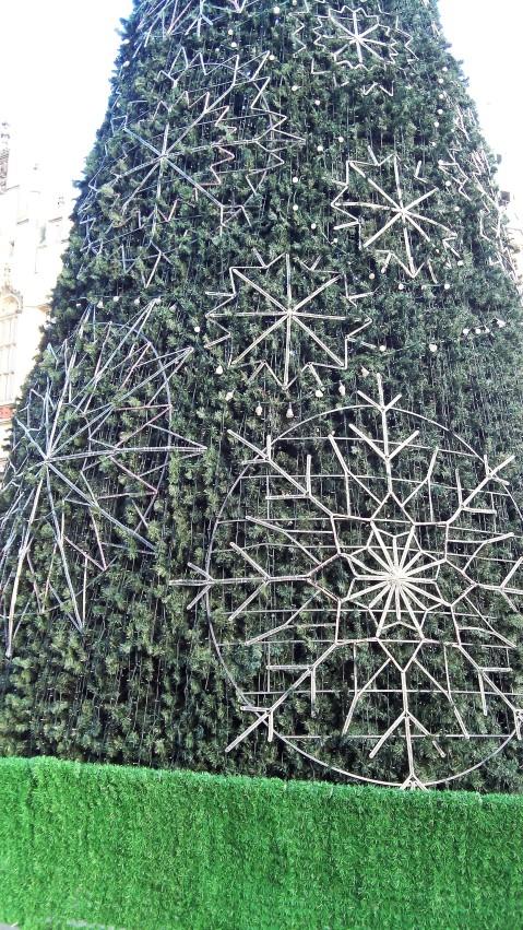 christmas-tree-in-rynek-square