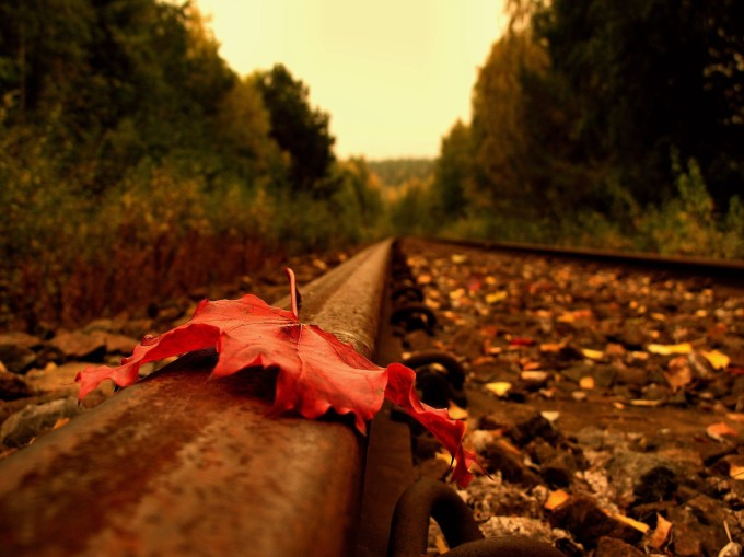 Dry_Leaf_on_Railway_Track.jpg