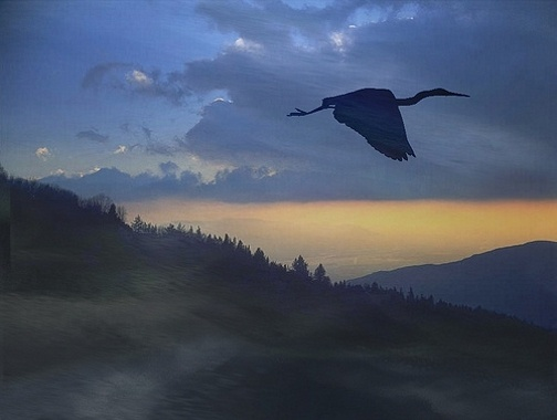 heron-at-twilight