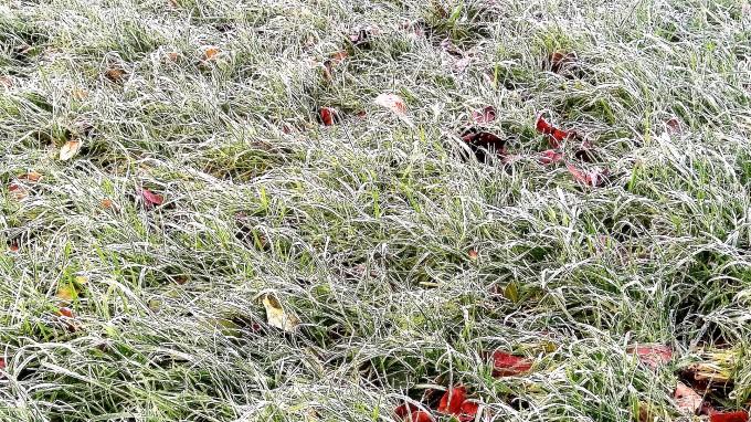 silver-winter-morning