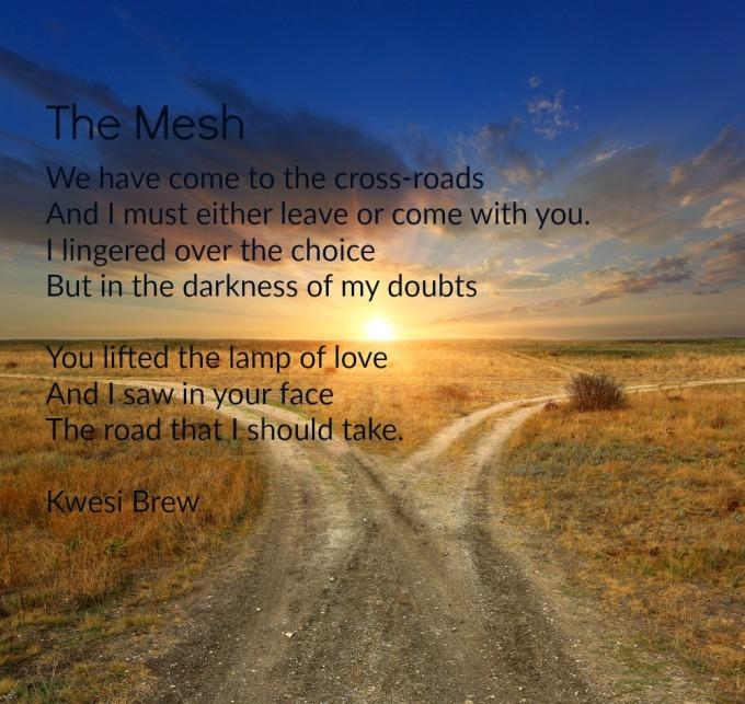 the-mesh