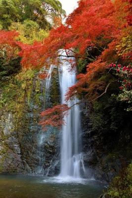 kemah-cho-osaka-prefecture