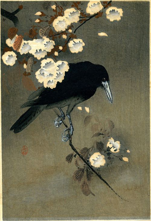 crow and plum blossom