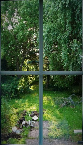 A Witer's Window