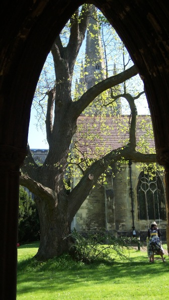 Norwich Cathedral in Spring 3